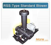 RSS-Type Standard Blower